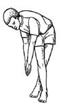 peregangan otot paha atas